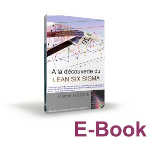 Ebook - A la découverte du Lean Six Sigma